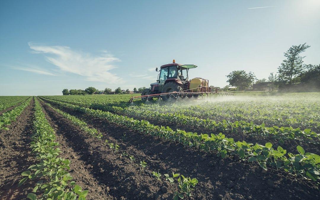 Digging Deeper Into Organic vs. Non Organic Food