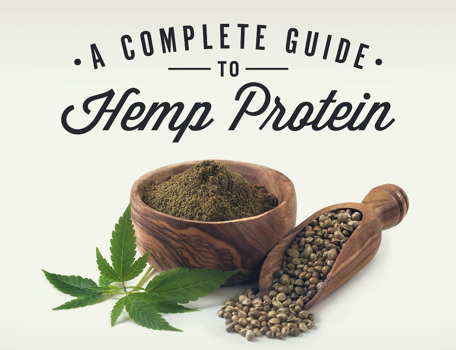 Hemp Protein Powder: Everything You Need To Know | Onnit Academy