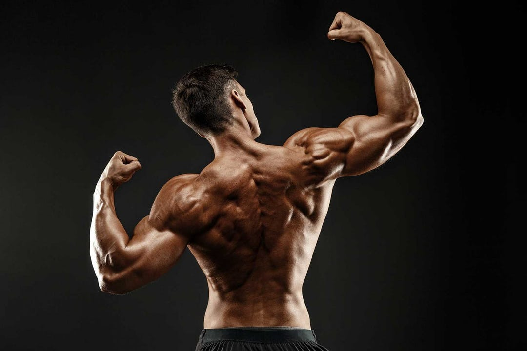 5 Killer Back & Biceps Workouts For Building Muscle