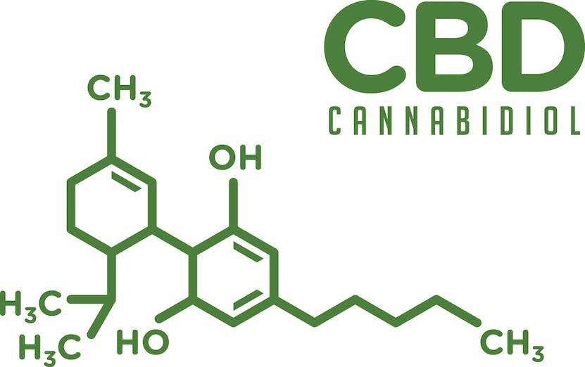 The Expert's Guide To CBD's Benefits & Uses | Onnit Academy