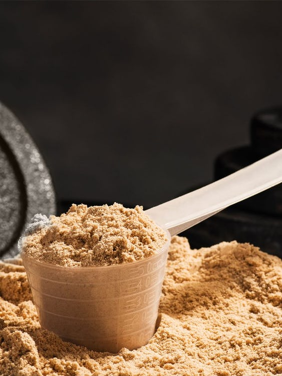 The Truth About Dairy and Lactose-Free Protein Powder